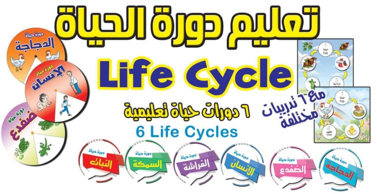 دورة الحياة.png